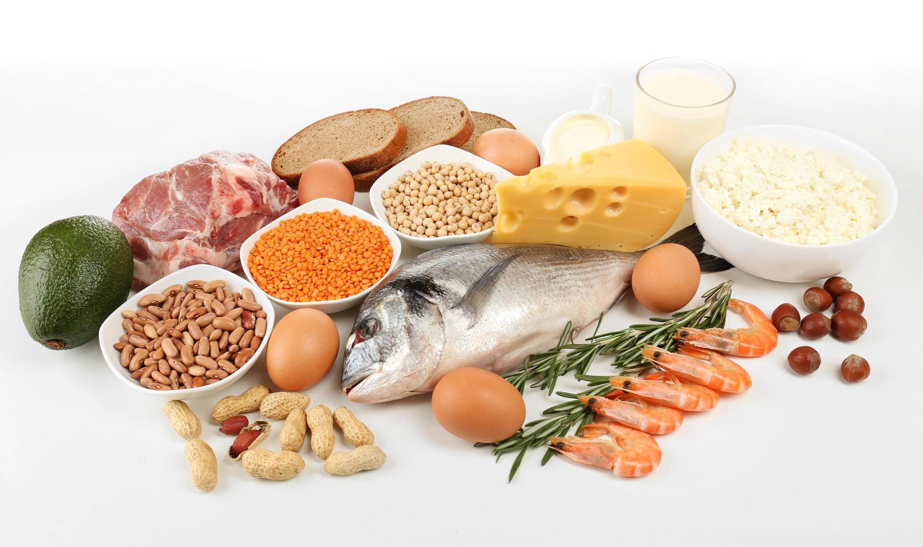 диета белковая от диетолога меню