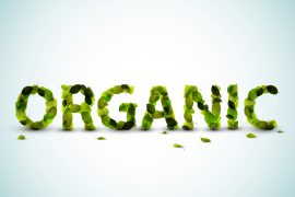 Organic - vector word made from fresh green leafs