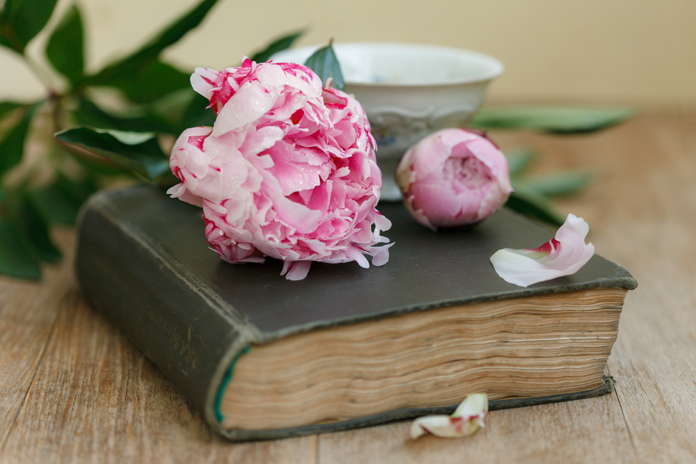 Book, flowers and cup on an old wooden table