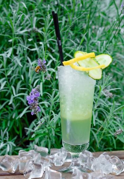 Gayanes_limonad s ogurcom