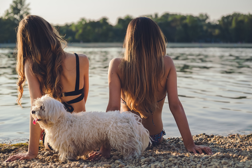 Girlfriends with dog enjoying on the beach