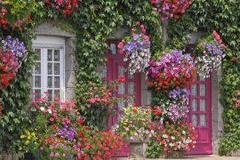 Le Haut de la Lande, Haus mit Blumen