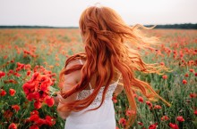 Beautiful young red-haired woman in poppy field with flying hair