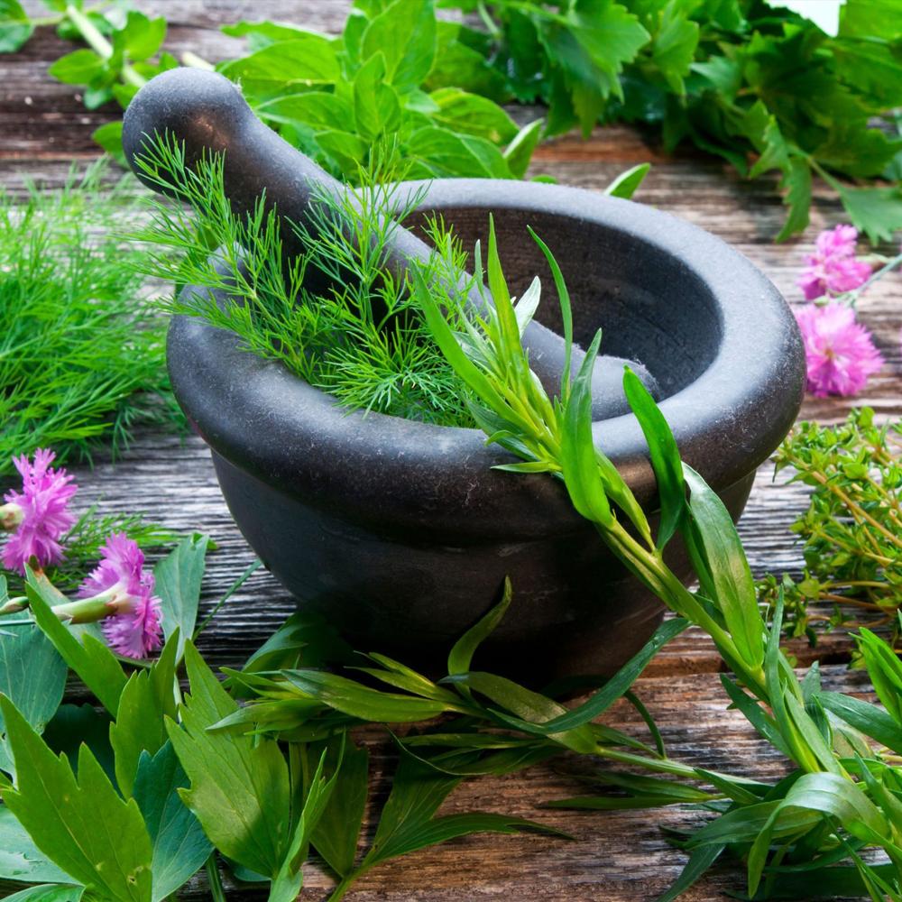 Herbal power-06_08